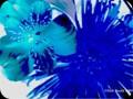 G0073_183blueburst