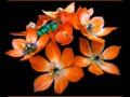 G0715_orange bouquet copy