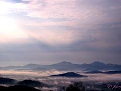 2013 Blue Ridge Heaven